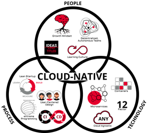 Cloud Native / DevOps Transformation logo