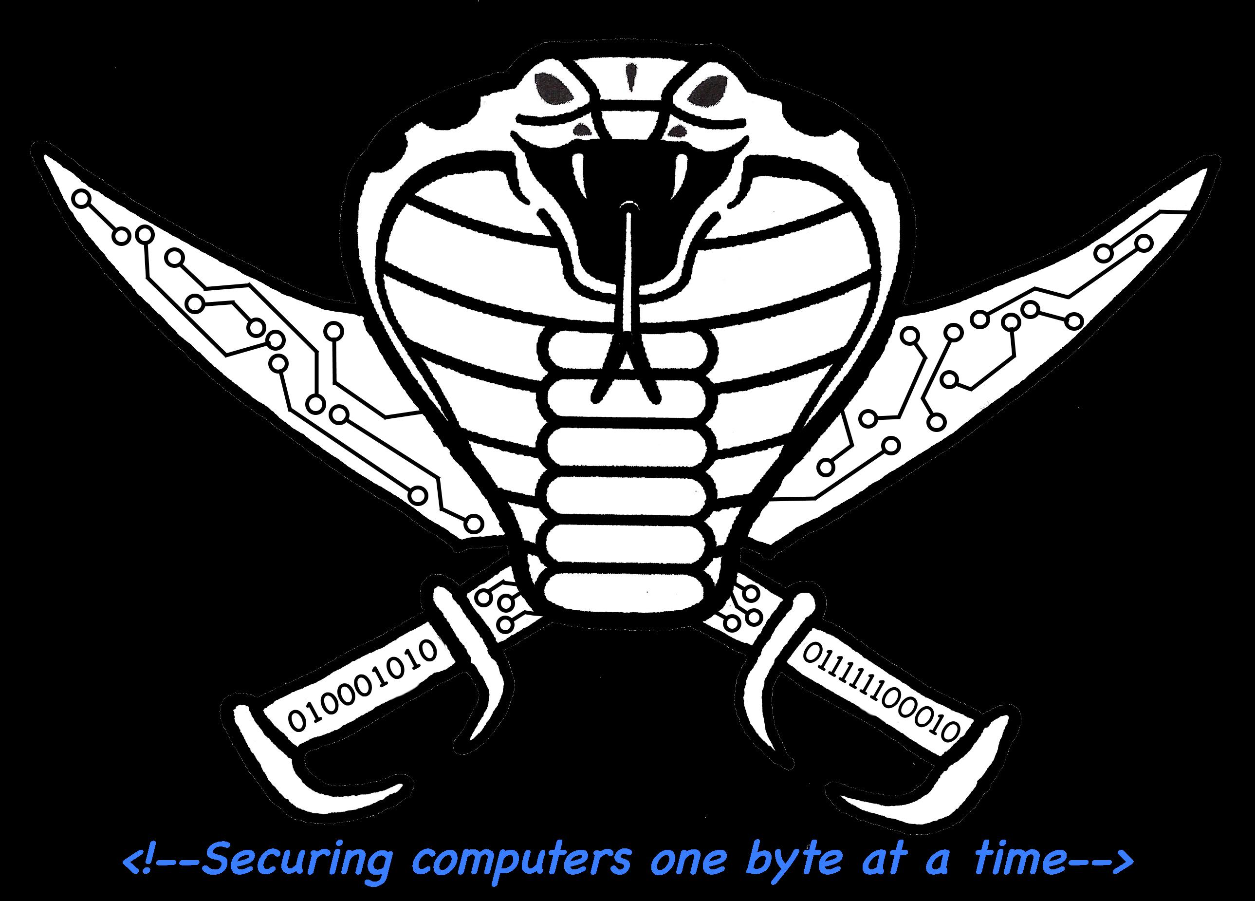 CYBER STRIKE SOLUTIONS logo
